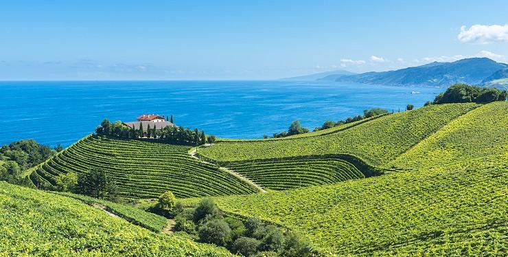 Wein aus Tarragona in Katalonien